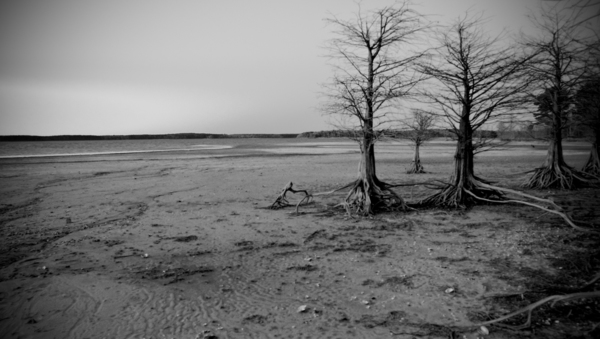 Lake O the Pines, TX Drought 1/2/2012